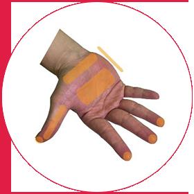手のあらゆる部位のタッチを再現